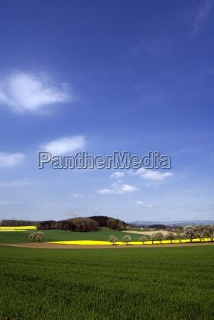 spring, landscape, iii - 618390