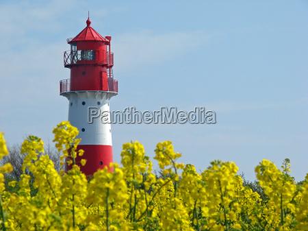 lighthouse in rape