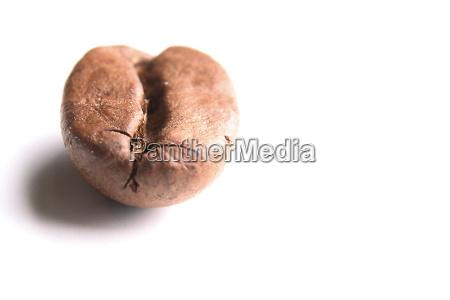 bean, 2 - 623165