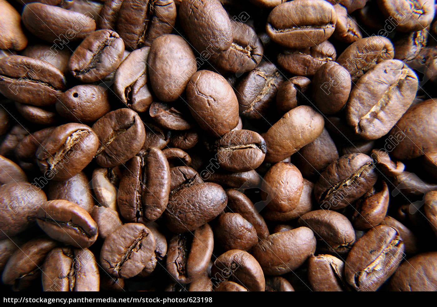 coffee, 2 - 623198
