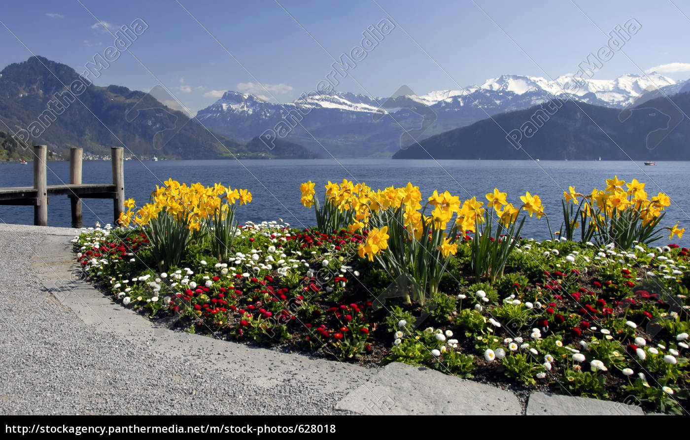 weggis, on, lake, lucerne - 628018