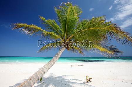caribbean, coast - 630397