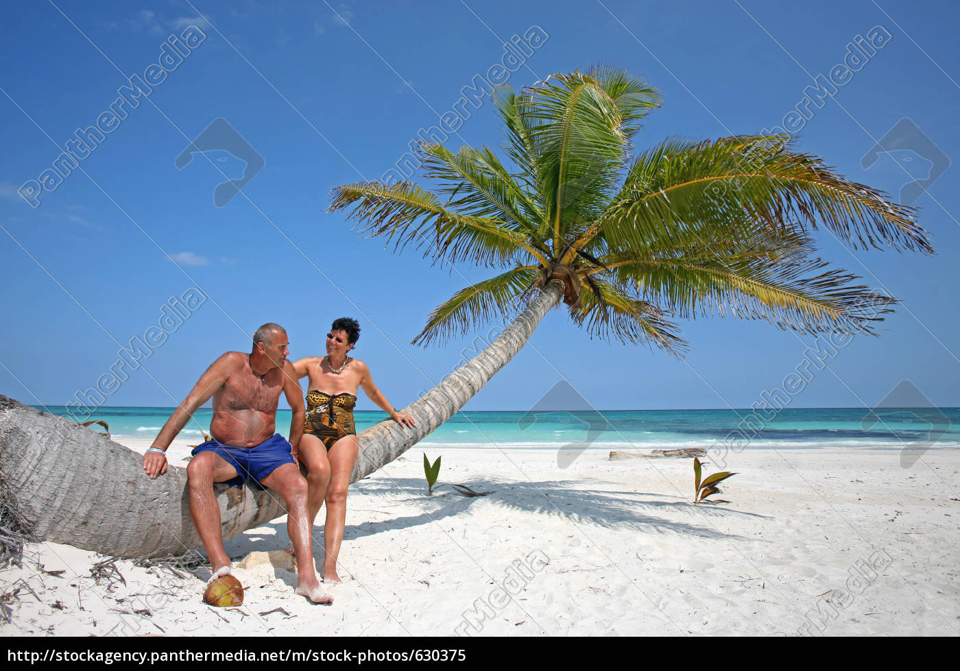 in, love, with, the, caribbean - 630375