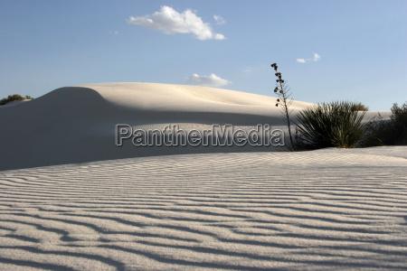 white, sand - 636620