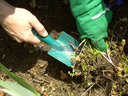 gardening, 03 - 638911