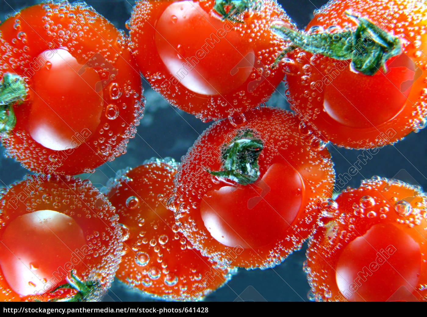 fresh, tomatoes, freshly, washed, - 641428