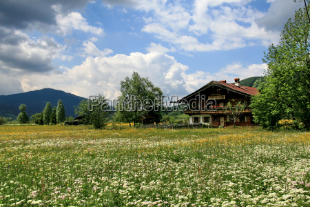 country, life, ammertal - 643238