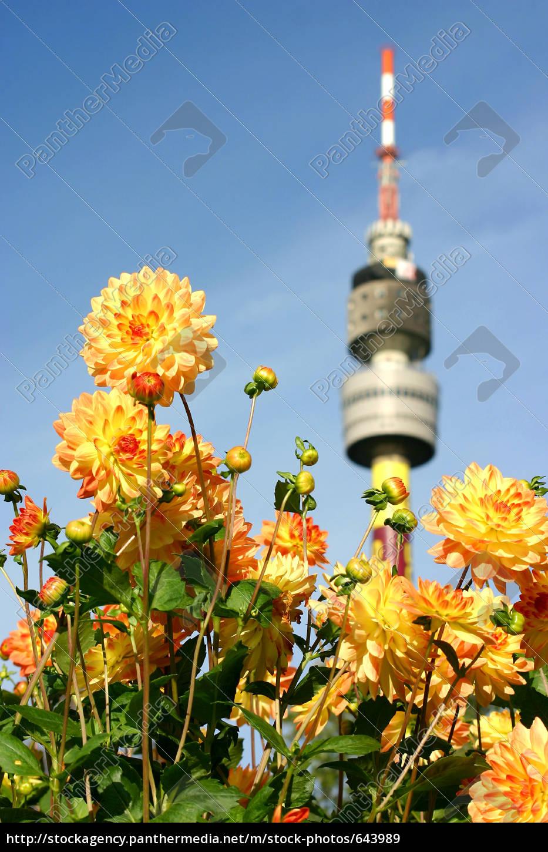 television, tower, in, westfalenpark, dortmund - 643989