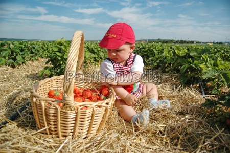 baby, and, strawberries - 647878