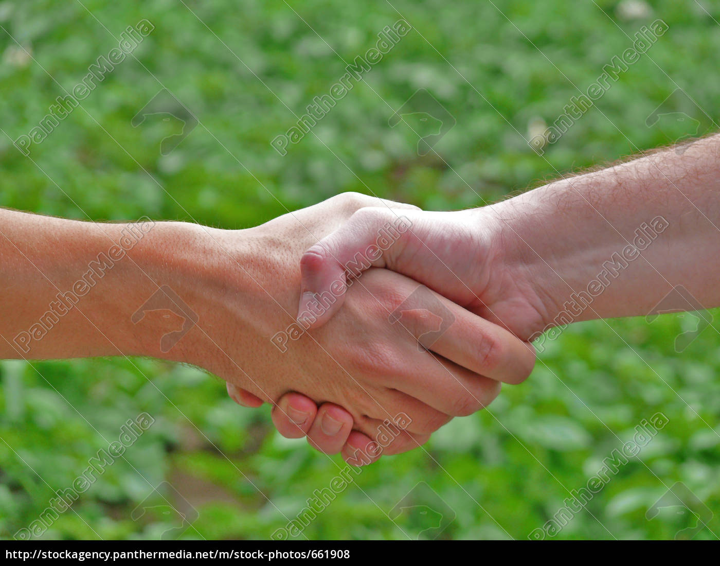 handshake, in, the, countryside - 661908