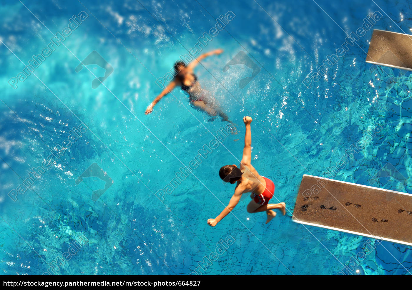 diving - 664827
