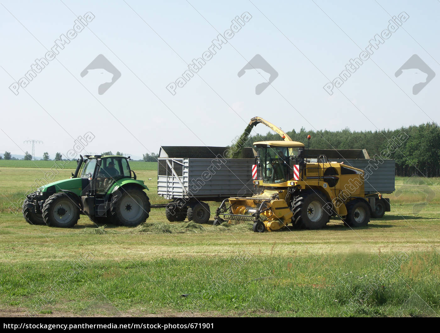 grass, harvesting - 671901