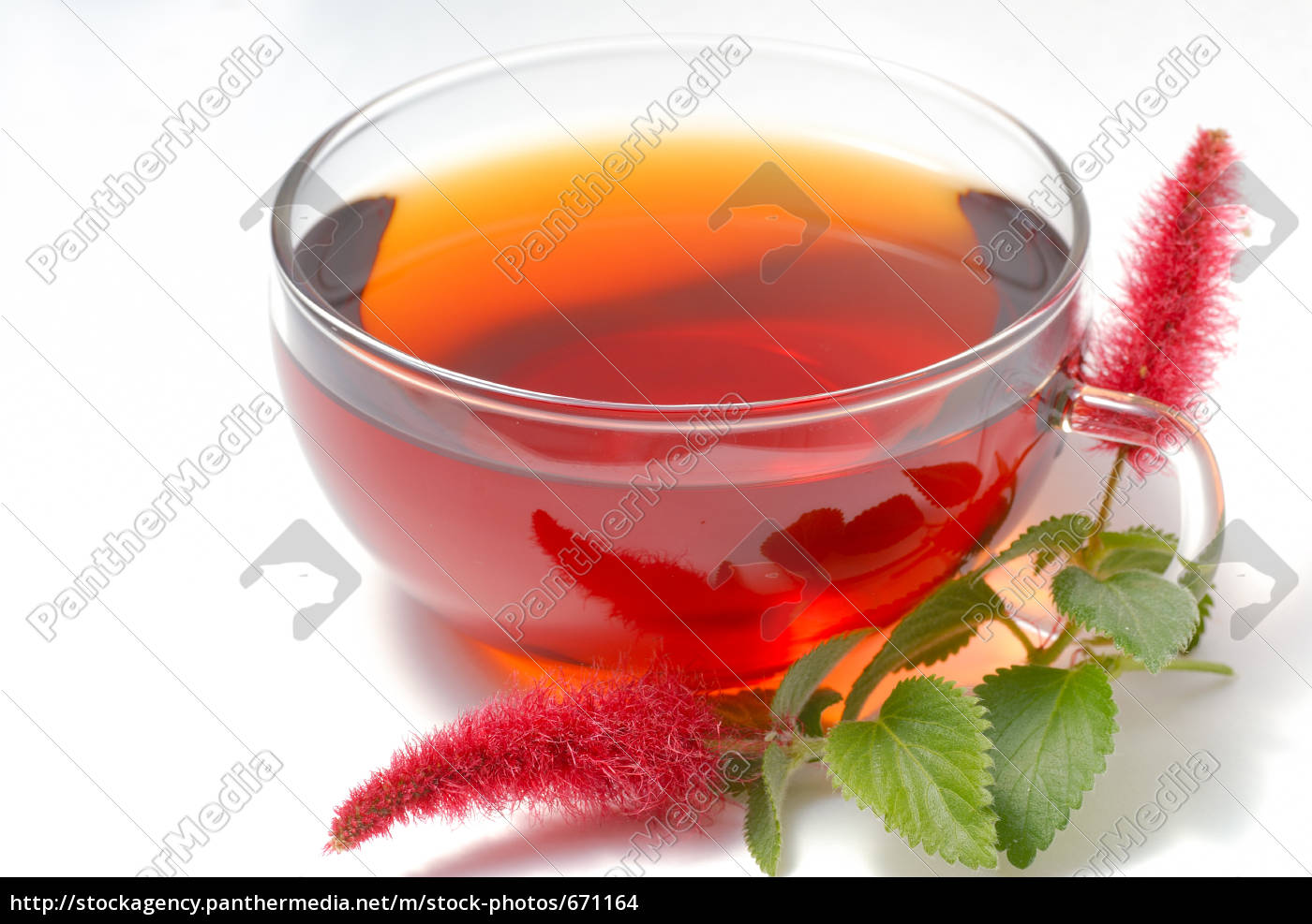 roibos, tea - 671164