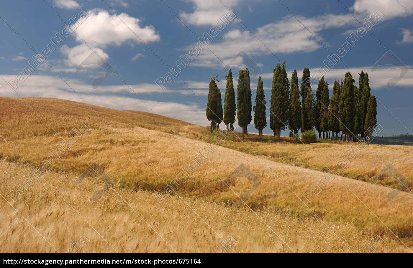 tuscany - 675164
