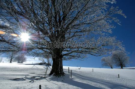 winter, landscape, 4 - 678541