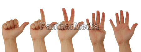 counting, hands, isolated, on, white - 679169