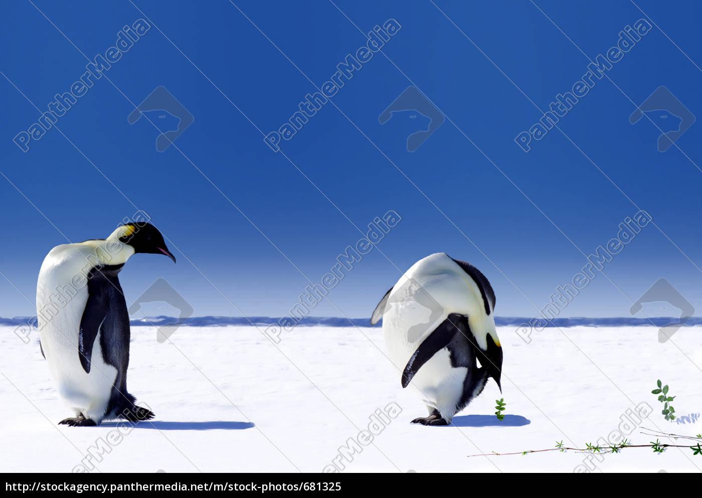 global, warming - 681325