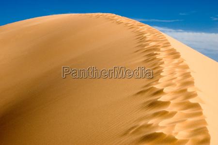 dune - 682343