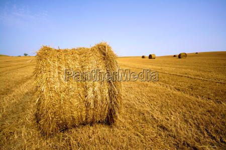straw, bales - 686648
