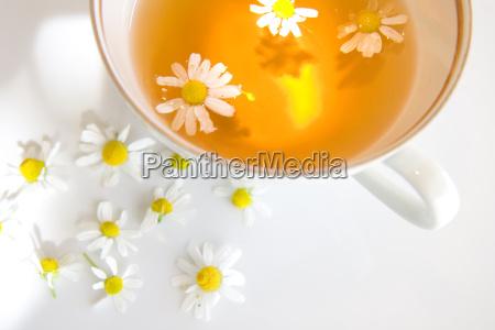 camomile, tea - 697369