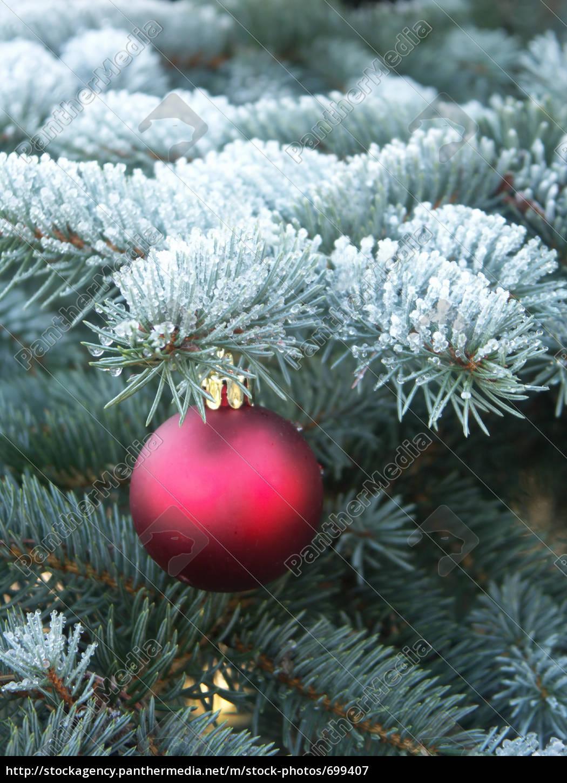 christmas - 699407