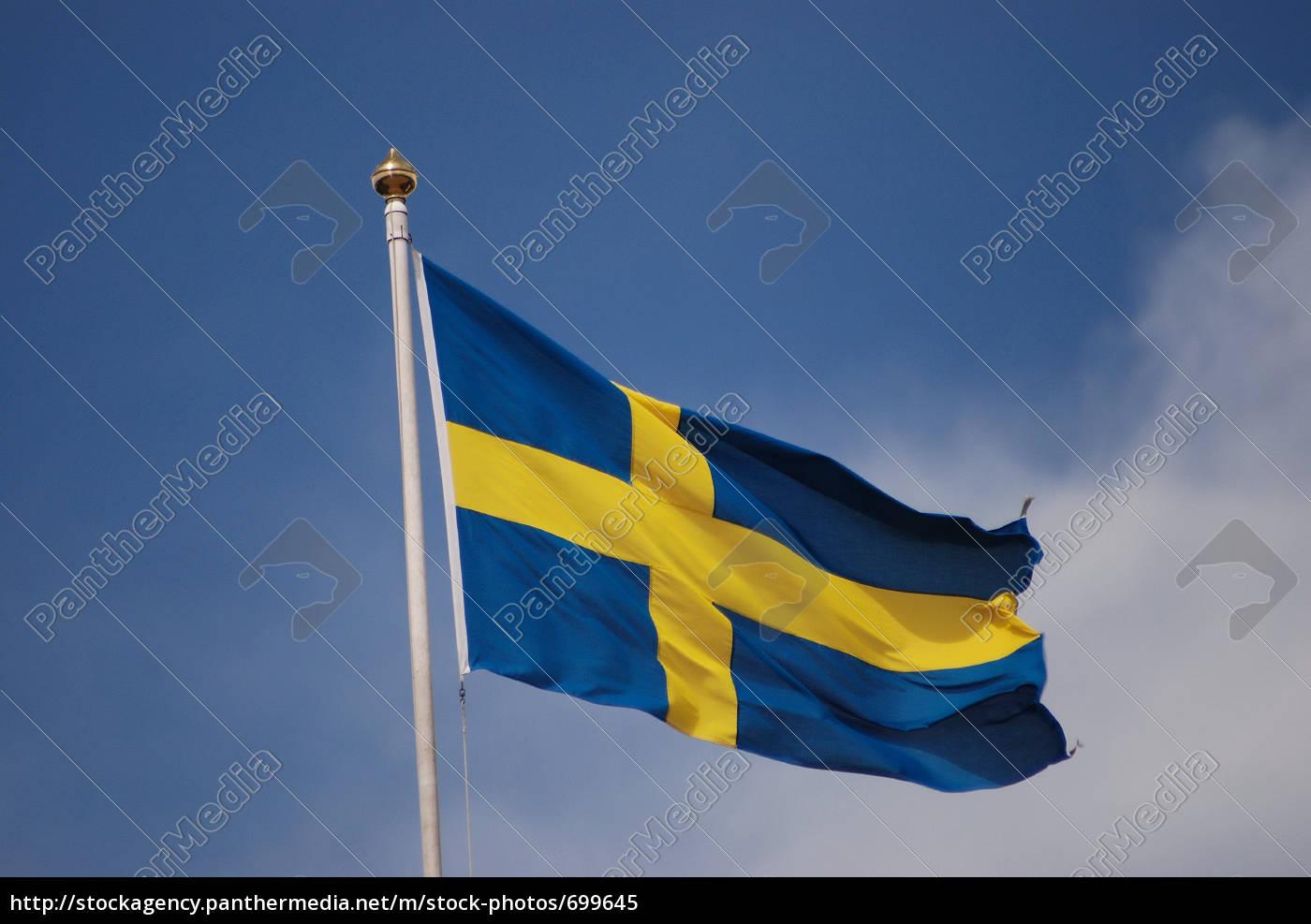 flag - 699645
