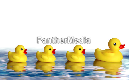 rubber, duck, family - 701183