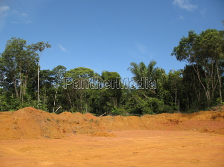 deforestation, rainforest, amazonas, -, brasil - 709674