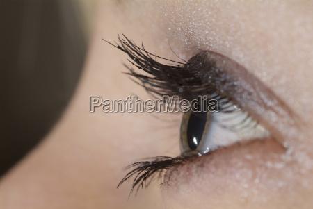 eye, open - 711550