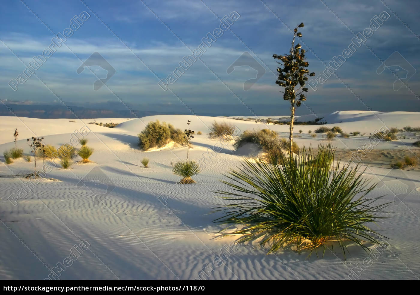 sunset, at, white, sands - 711870