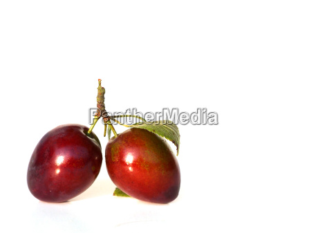 plums - 727784