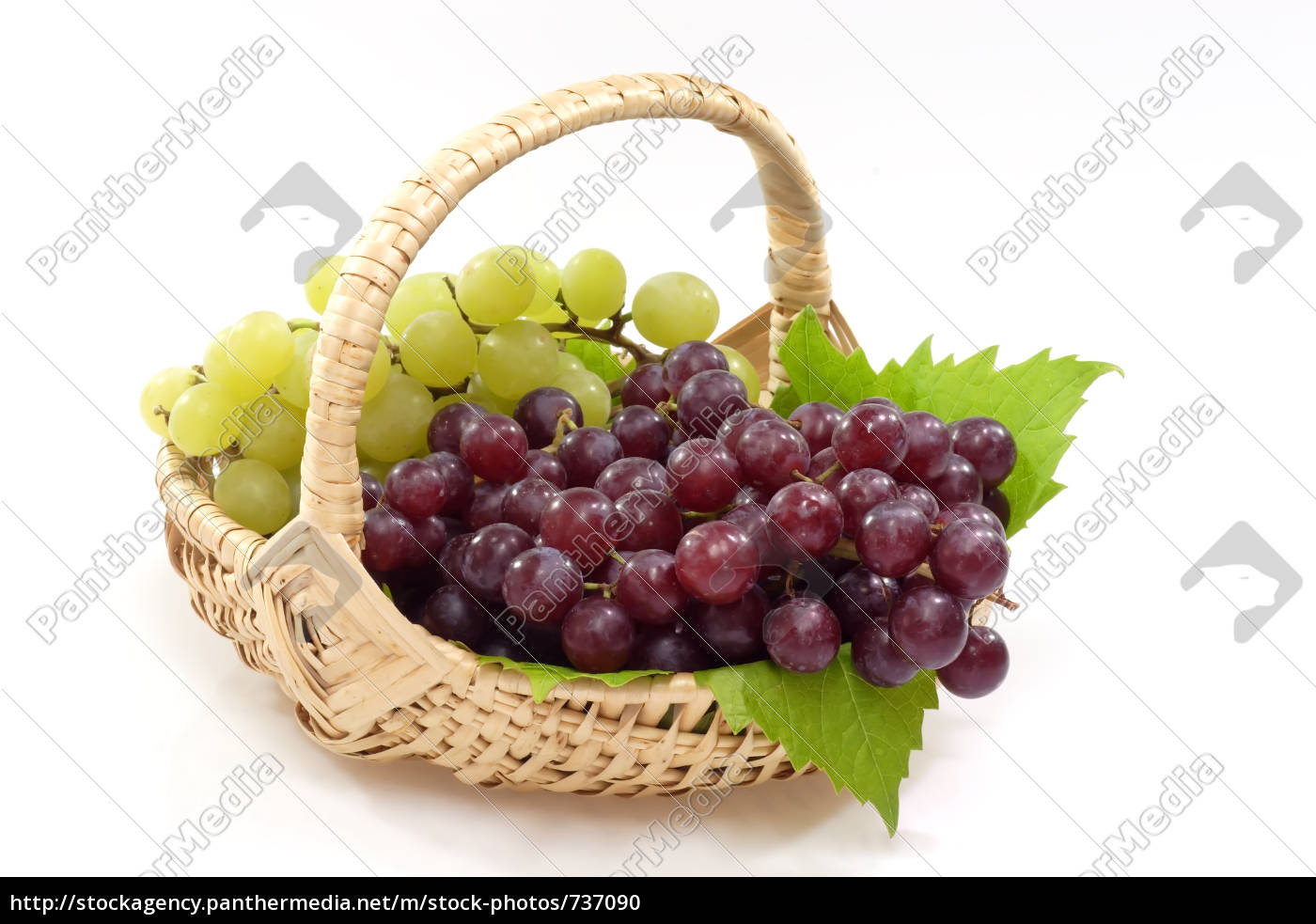 basket, of, grapes - 737090