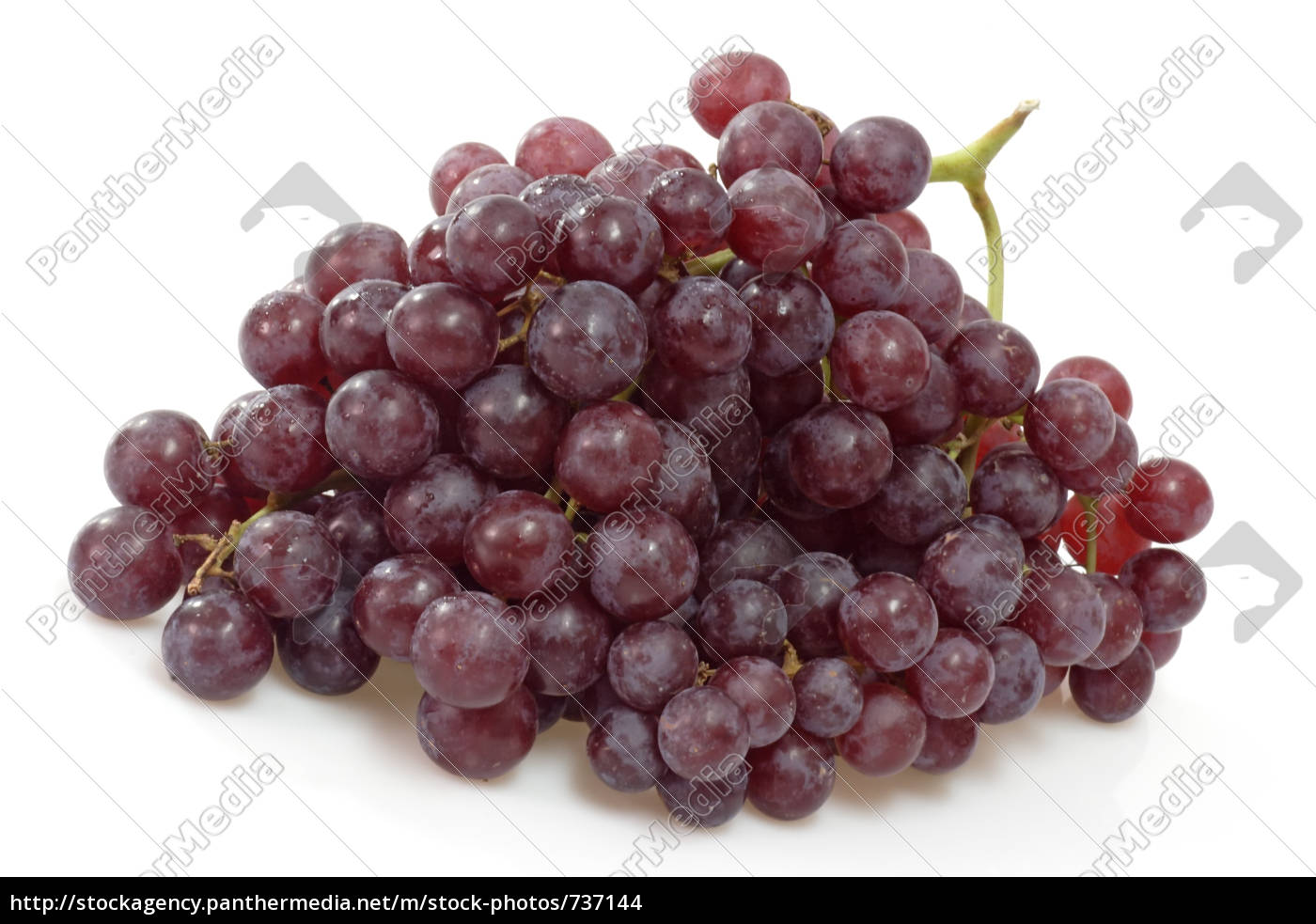 red, grapes - 737144