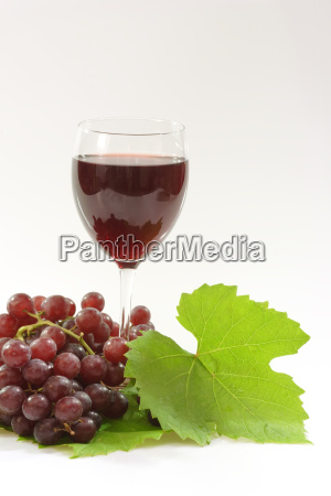 wine, glass - 737264
