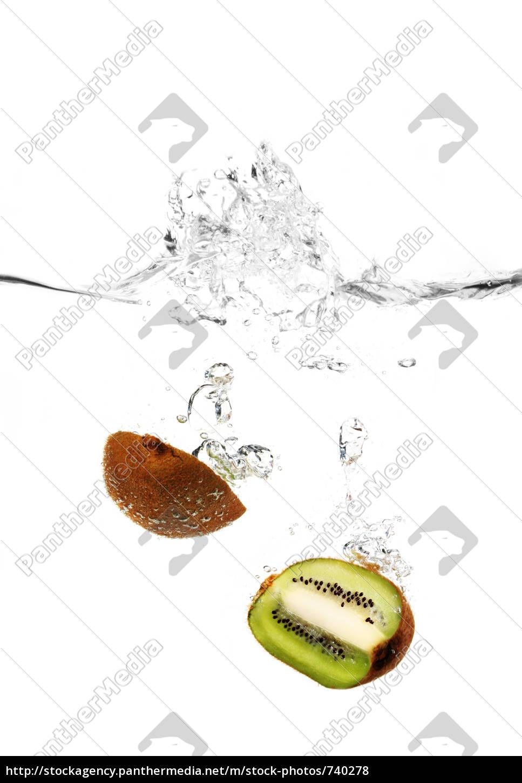 kiwi, in, the, water - 740278