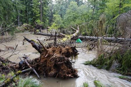 flood, in, sauerland - 770143