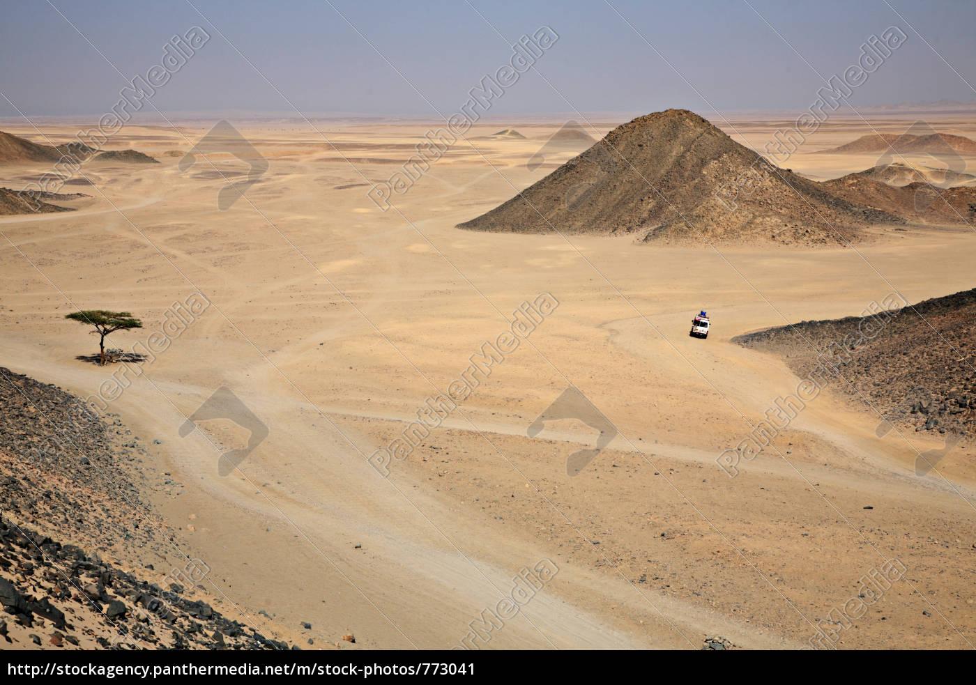 the, lebt..2, desert - 773041