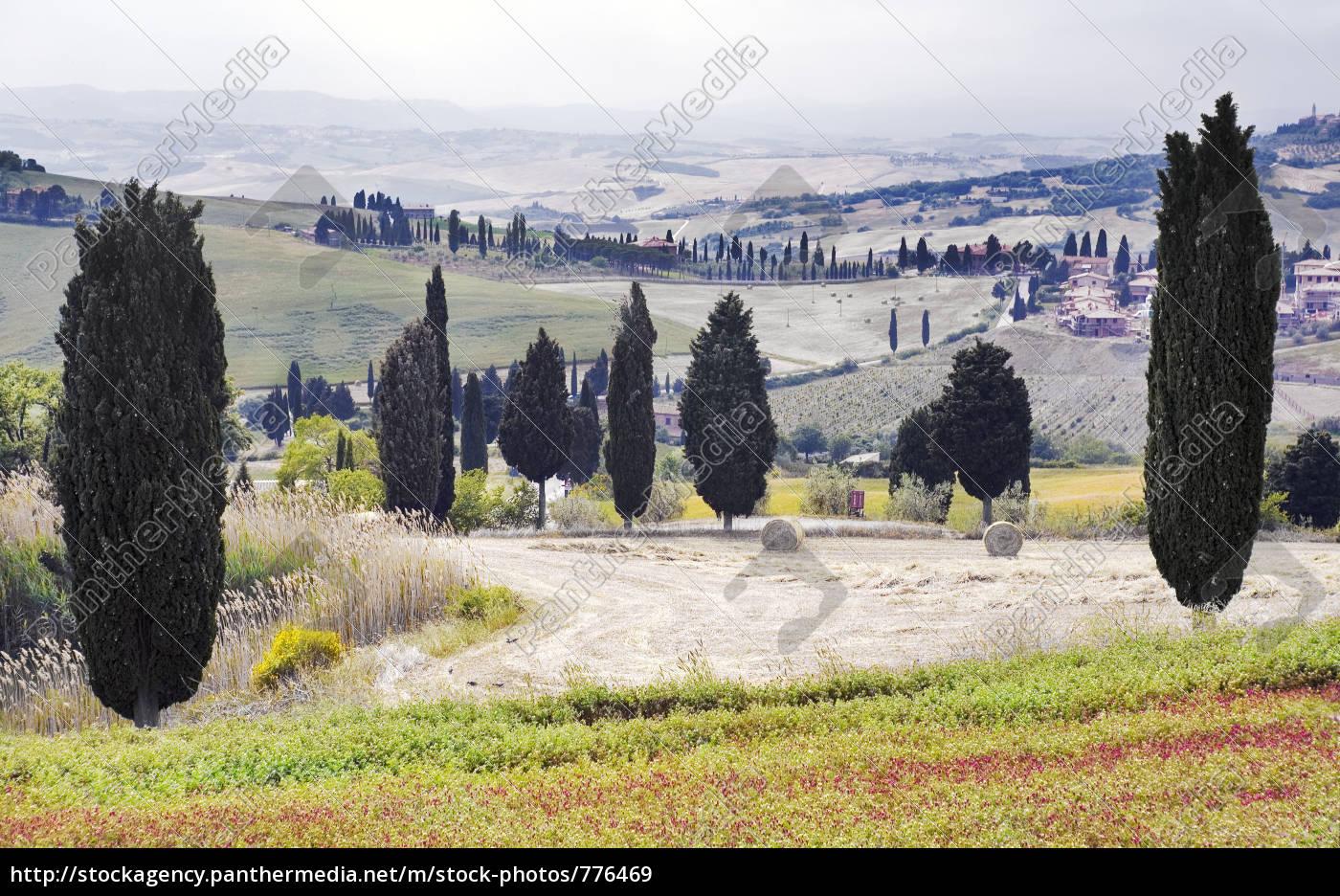tuscany - 776469