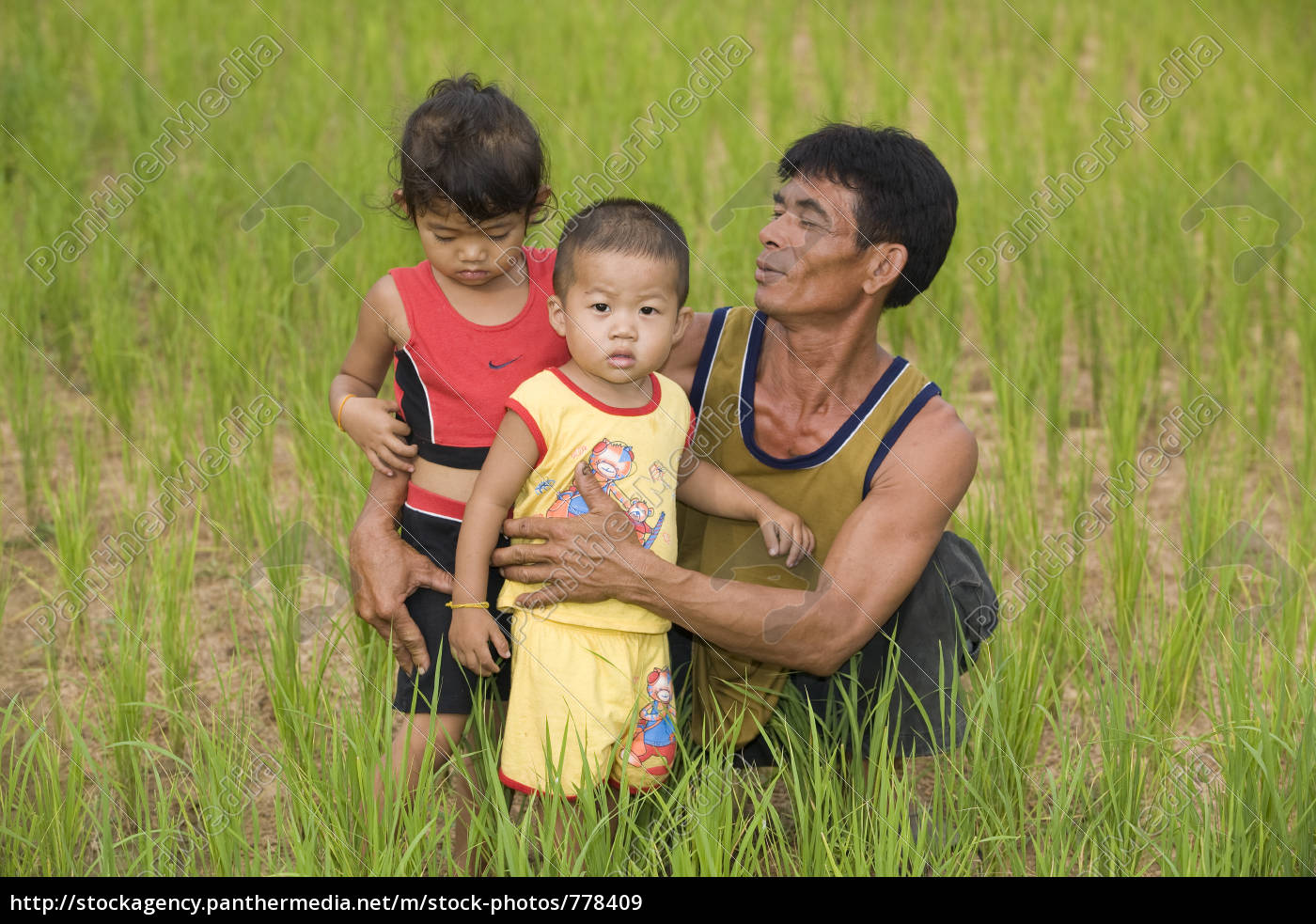 family, in, the, paddy, field - 778409