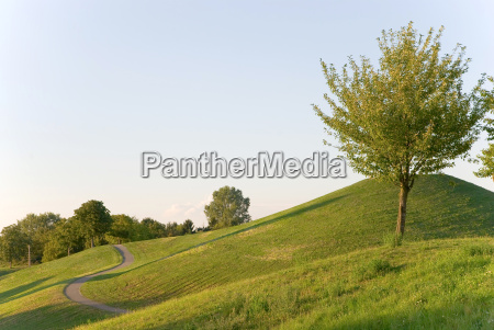 park, in, the, city - 778131