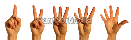 hand, signals, for, numbers, one, through - 782539