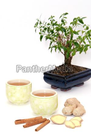 green tea and bonsai