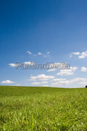 summer, landscape - 795087