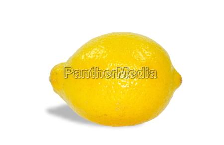 citrus - 807429