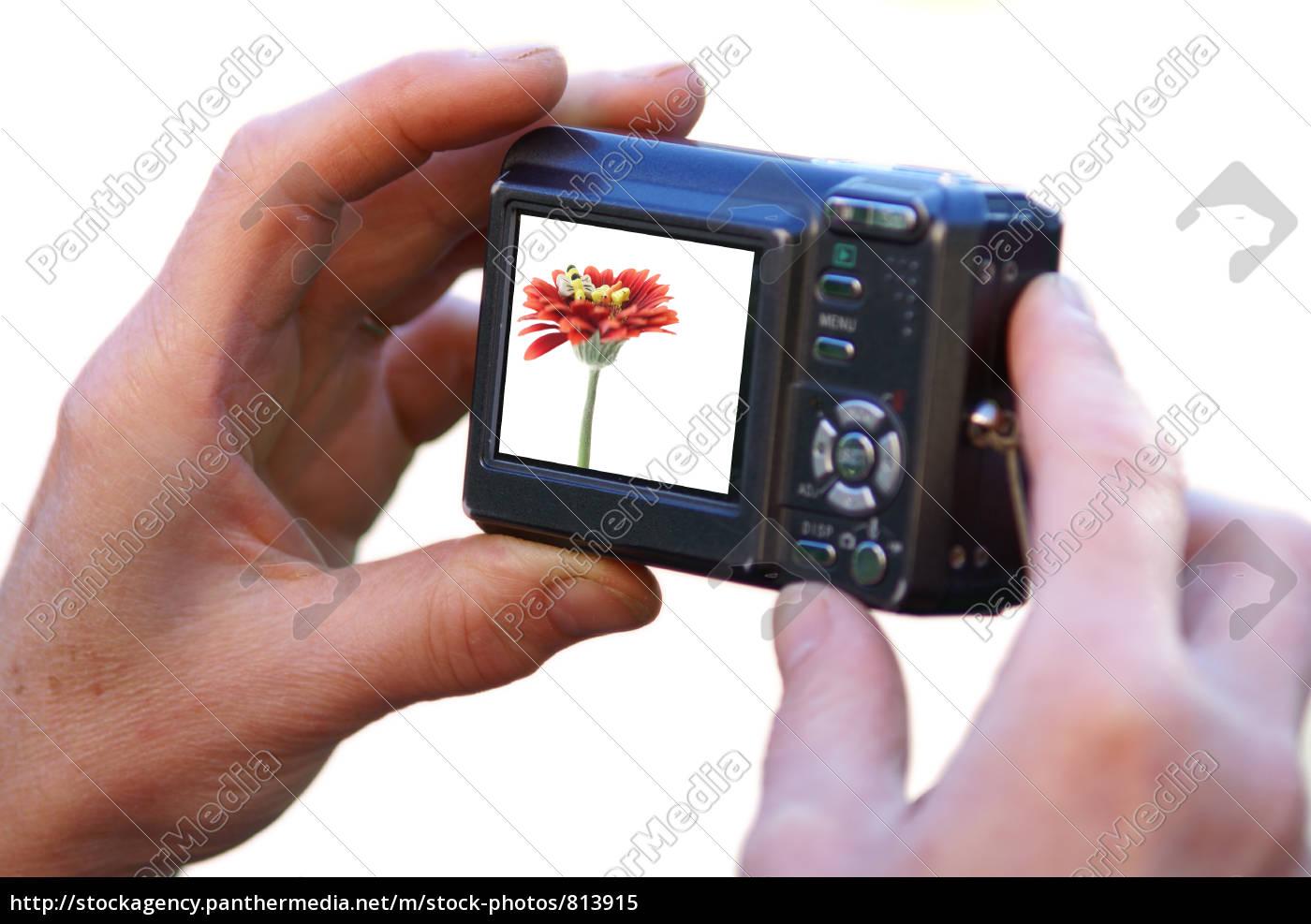 camera - 813915
