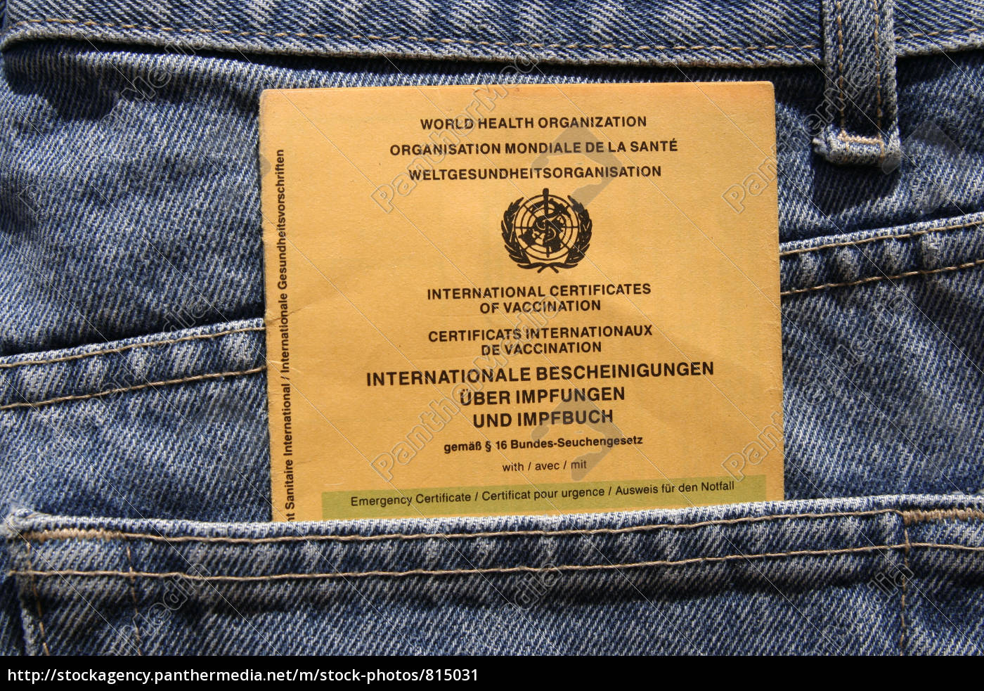 vaccination, record, in, jeans - 815031