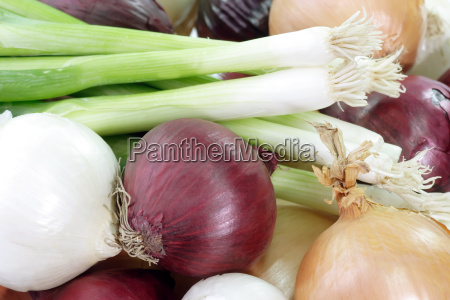 onion pattern