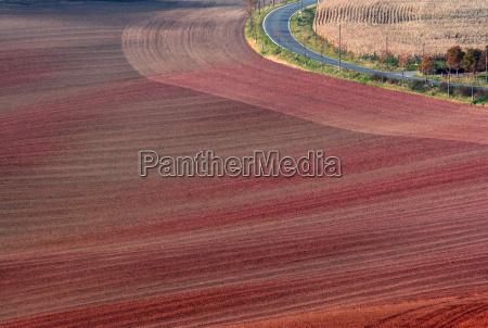 light on the autumn fields