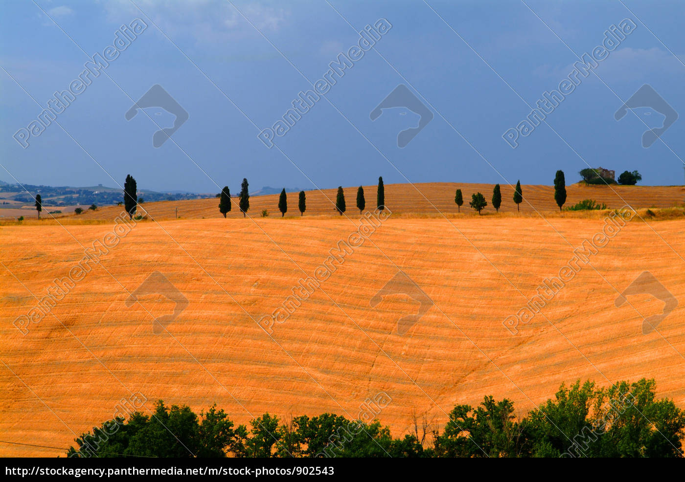 tuscany - 902543