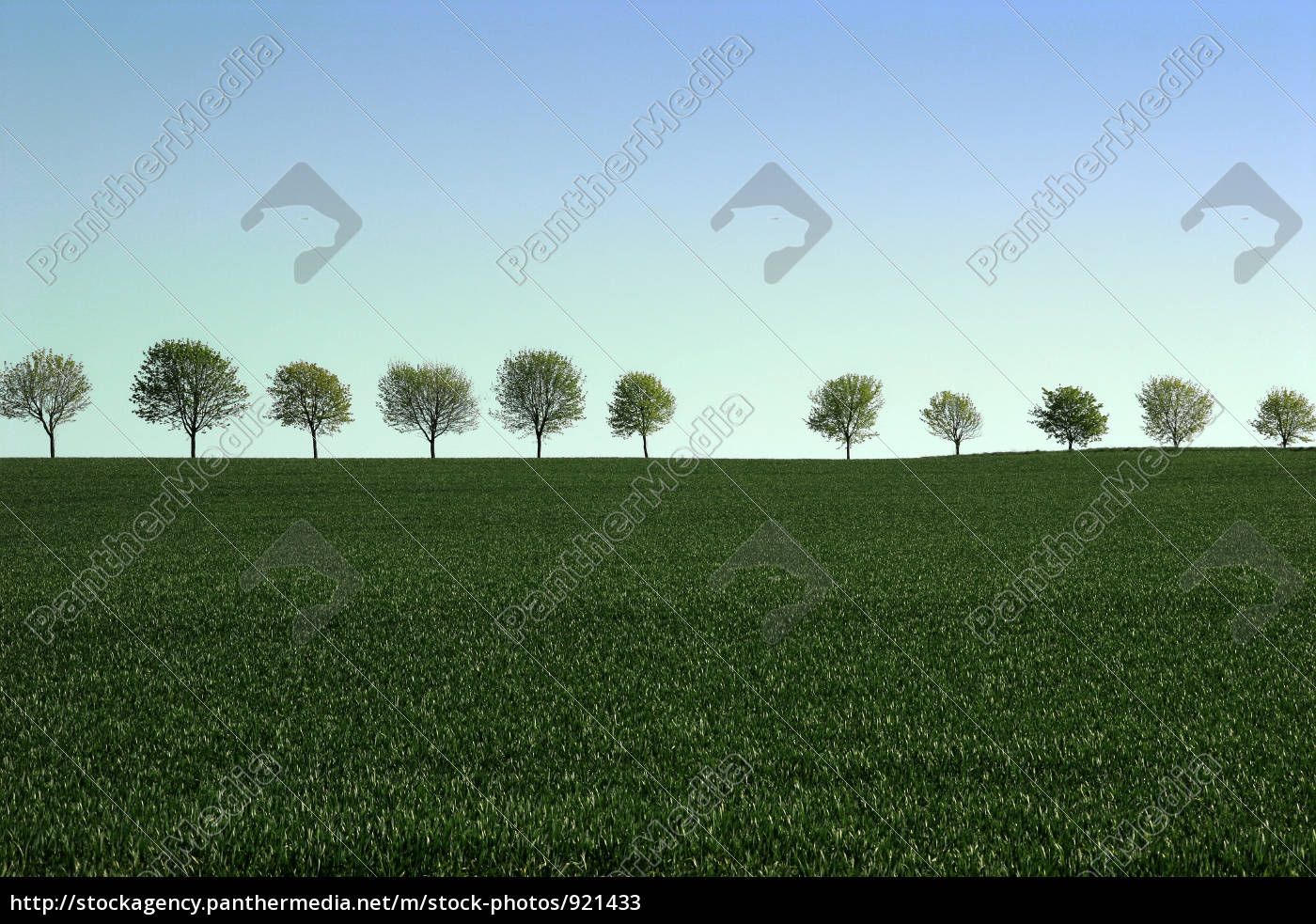 fields, and, meadows - 921433